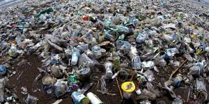 Che vita di plastica…