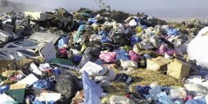 Rapporto Ecomafia 2015