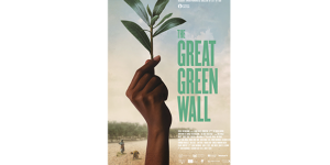 The Great Green Wall (2019)