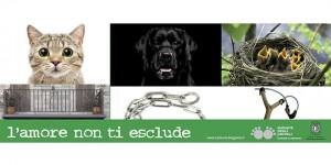 Il Comune di Bergamo in prima linea con una campagna di sensibilizzazione contro il maltrattamento
