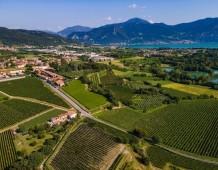 Brescia: il territorio del vino