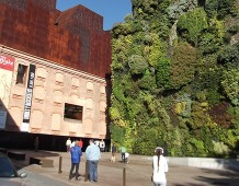 Le città cambiano e i giardini diventano verticali