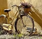 Gita fuori porta in bicicletta