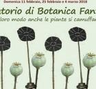 Laboratorio di Botanica Fantastica