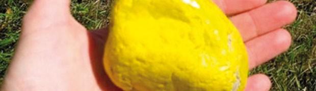 """Lecco, """"Sassi gialli"""" contro le inondazioni"""