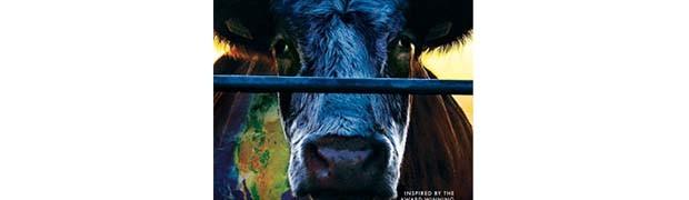 Inquinamento, cibo, salute  Due documentari per riflettere
