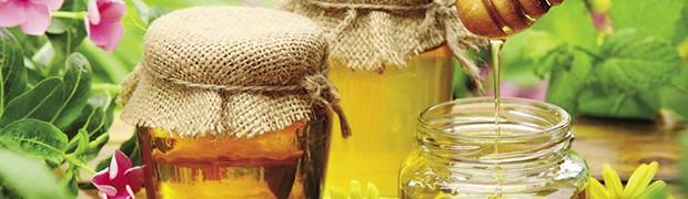 Miele d'acacia, l'etichetta è servita
