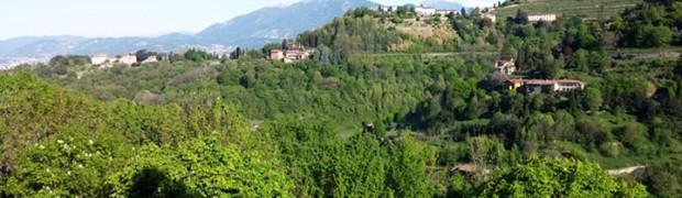Luppoleto Elav Valle d'Astino