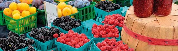 Mercato dei Produttori. Biodiversità e cibo sano e genuino
