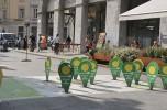 Bergamo Green
