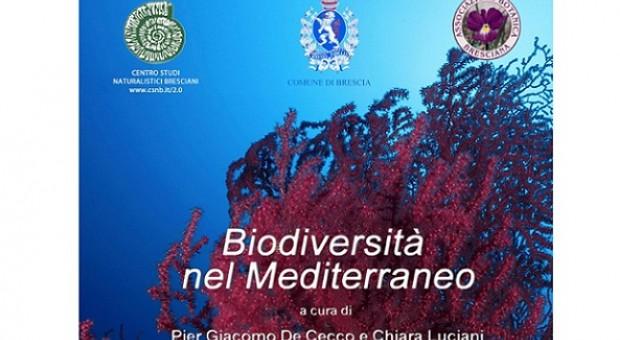 Biodiversità nel Mediterraneo