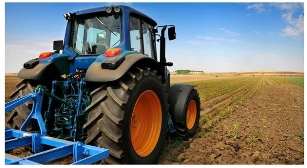 Festa del Ringraziamento Agricolo