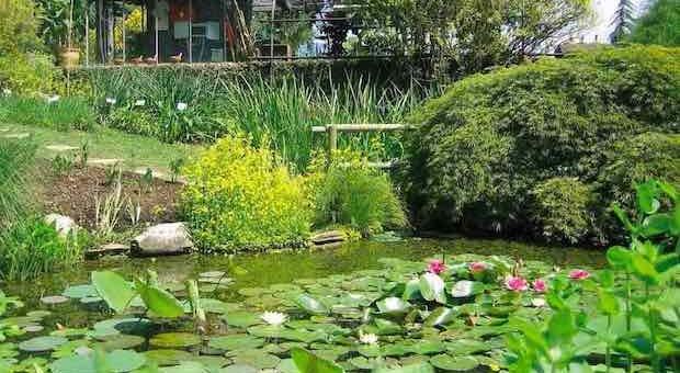 orto botanico Bergamo