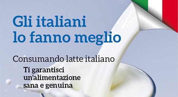 Mondo latte e dintorni