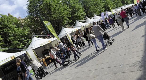 Torna il Festival dell'Ambiente