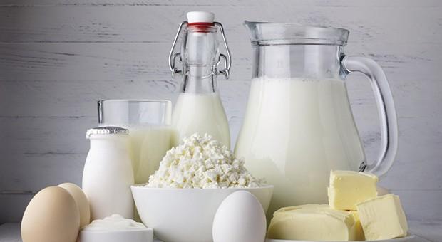 Mondo latte