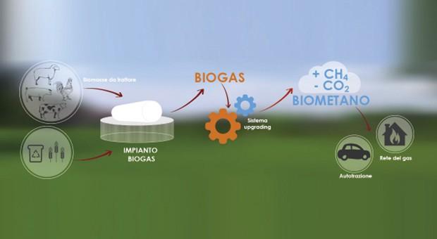 Agroenergie infografica
