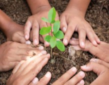 Un albero, una persona, una comunità