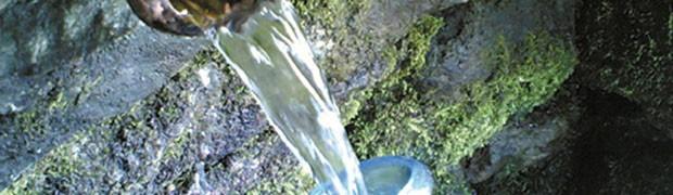 L'acqua immessa in rete