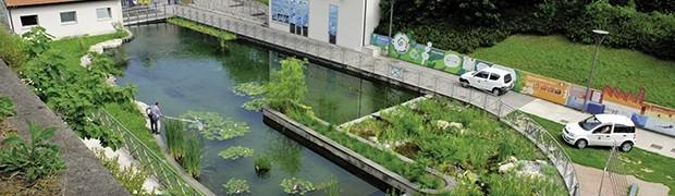 """Biolago depurato dalle alghe grazie a un """"biofiltro"""""""