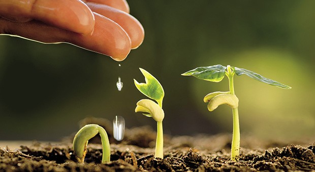 Cibo e agricoltura tra Erg e G7
